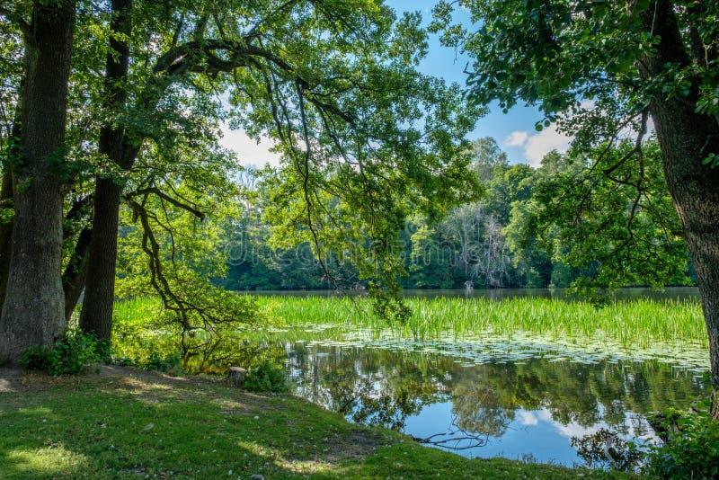 De zomer in Norrkoping, Zweden stock afbeelding