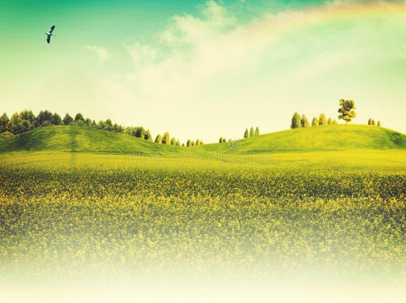 De zomer seizoengebonden achtergronden stock afbeelding