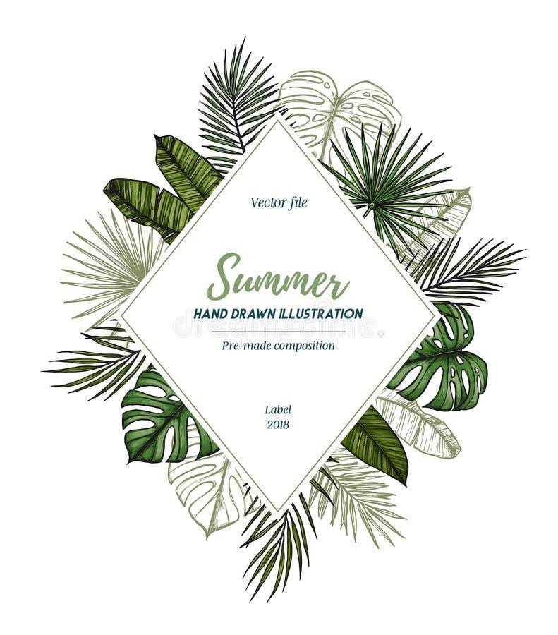 De zomer tropisch exotisch malplaatje Etiket met palmbladenmonster
