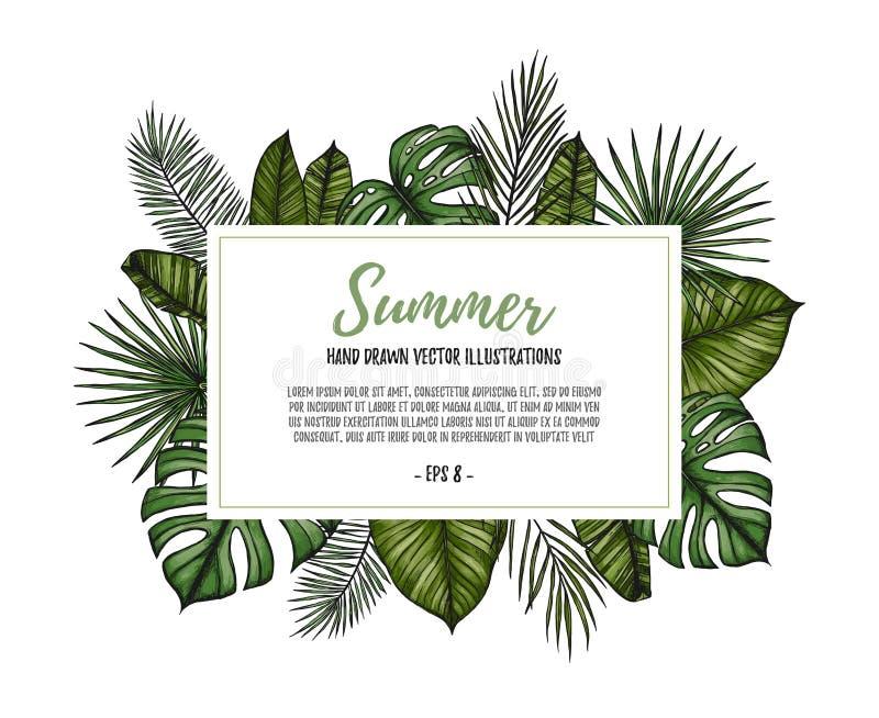 De zomer tropisch exotisch malplaatje Etiket met palmbladenmonster vector illustratie