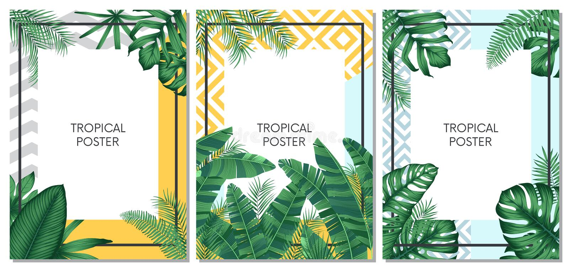 De zomer tropisch vector vastgesteld ontwerp voor kaarten, affiche of vlieger met exotische palmbladen vector illustratie