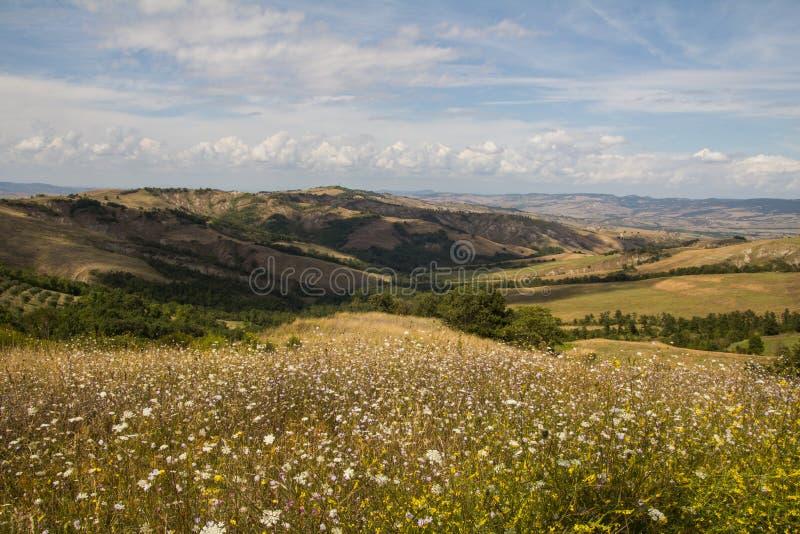 De zomer in Val-d'Orcia, Toscanië royalty-vrije stock fotografie