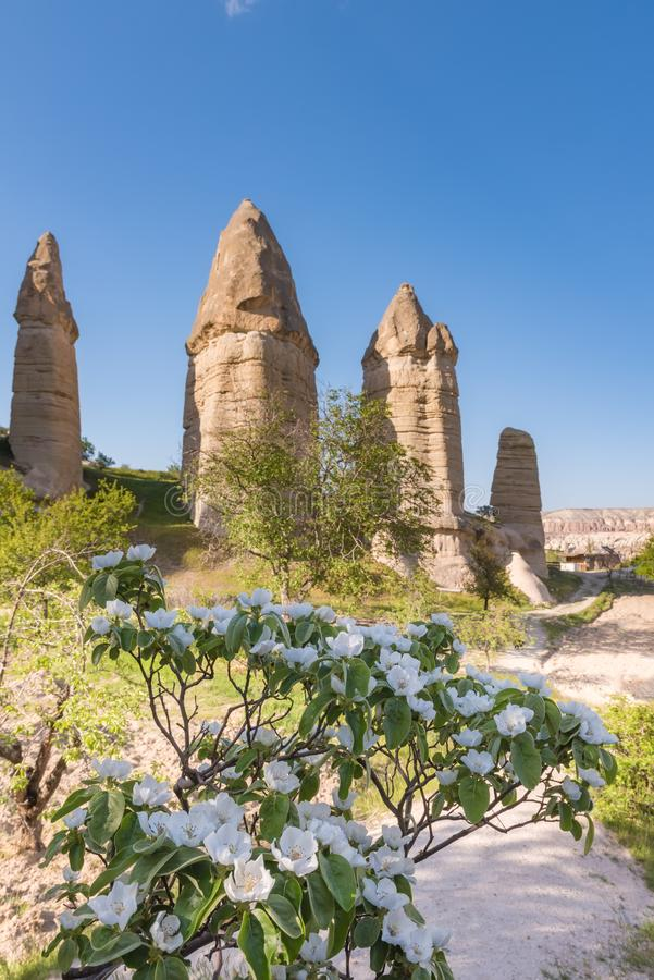 De zomer van Goreme Cappadocia Turkije van de liefdevallei royalty-vrije stock foto
