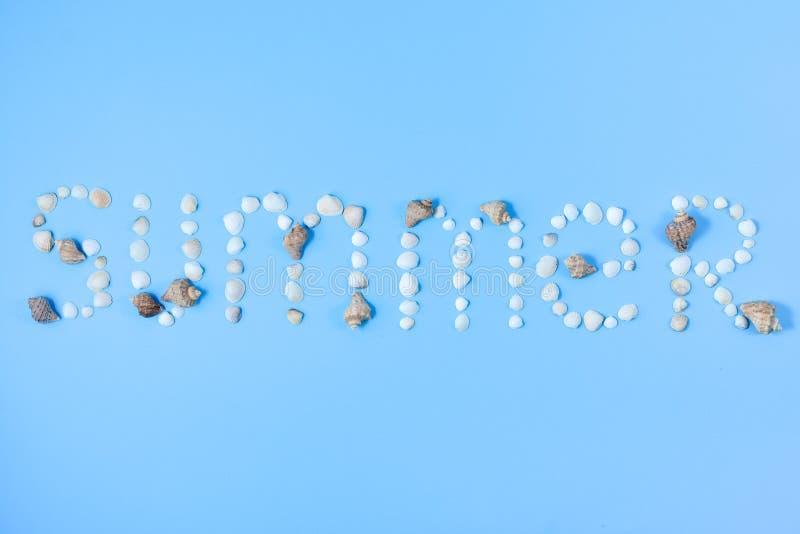 De zomer van zeeschelpen op blauwe achtergrond wordt gemaakt die stock afbeelding
