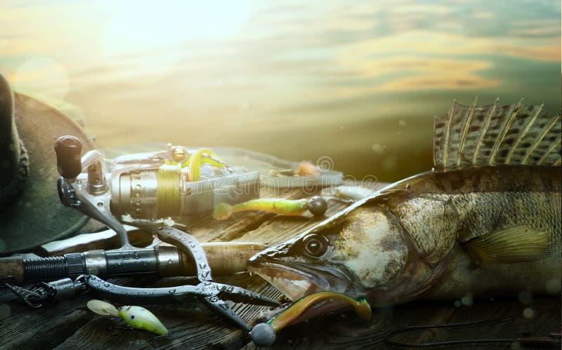 De zomer visserijachtergrond Visserijlokmiddel en trofee Zander stock foto