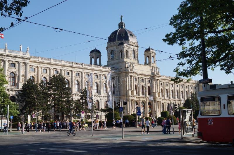 De zomer in Wenen royalty-vrije stock foto
