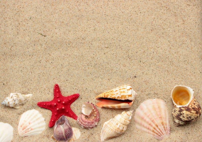 De zomerachtergrond royalty-vrije stock fotografie