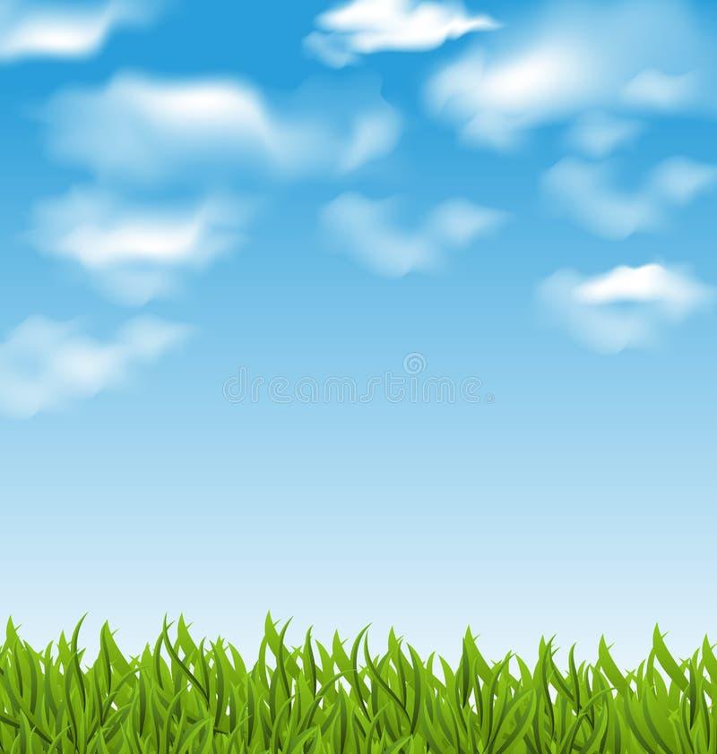 De zomerachtergrond met groene gras en hemel vector illustratie