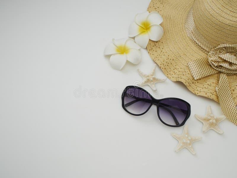 De zomerachtergrond Shells, strohoeden, zonnebril stock foto's
