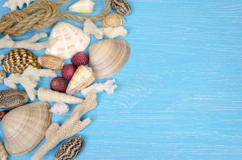 de zomerachtergrond van zeeschelpen en Maritieme voorwerpen wordt gemaakt dat royalty-vrije stock afbeeldingen