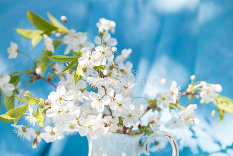 De zomerboeket een stilleven in lichte tonen in heldere zonnige dag Takken van de tot bloei komende kers Blauwe backgrou stock fotografie
