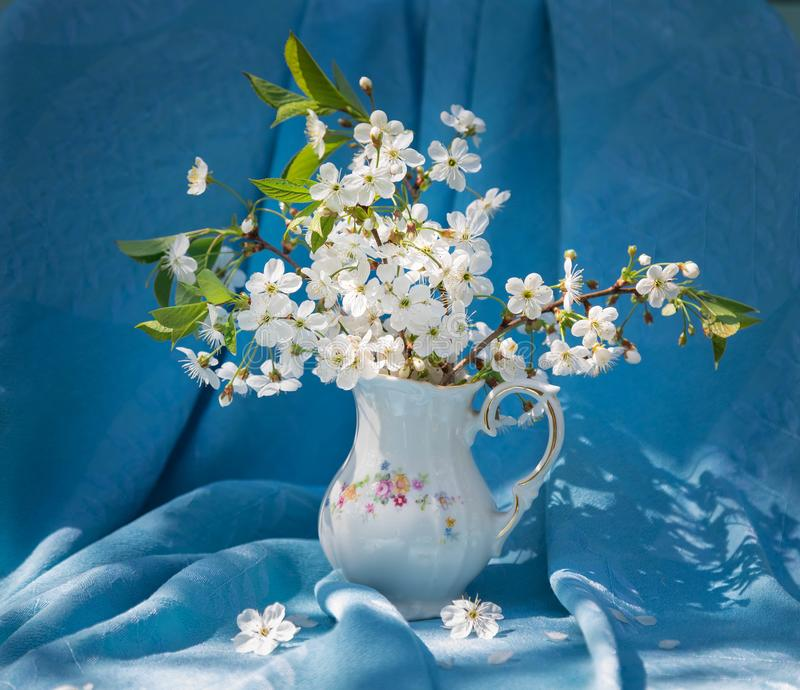 De zomerboeket een stilleven in lichte tonen in heldere zonnige dag Takken van de tot bloei komende kers Blauwe backgrou royalty-vrije stock afbeelding