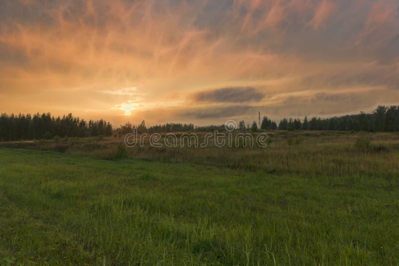 De zomerdaling stock foto's