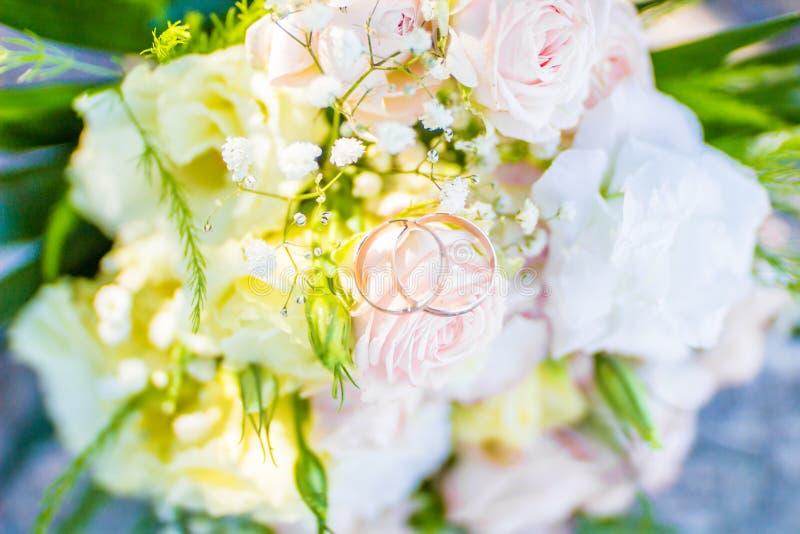De zomerfoto's, landschappenaard in de zomer Bloemen en installaties stock afbeelding