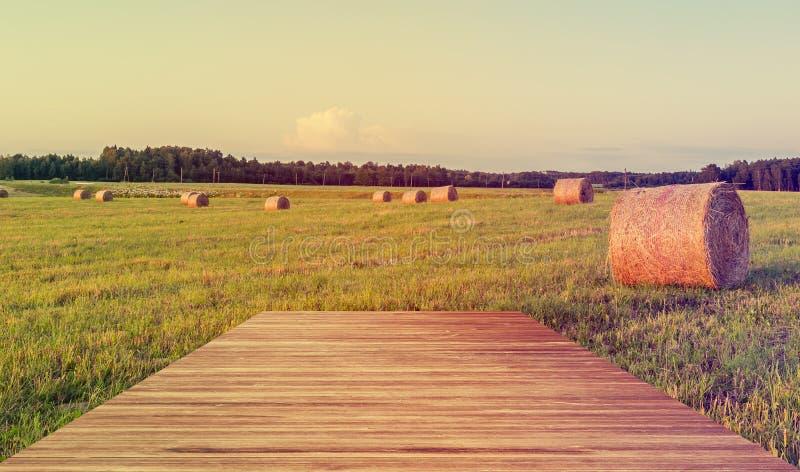 De zomergebied met broodjes van hooibergen royalty-vrije stock afbeelding