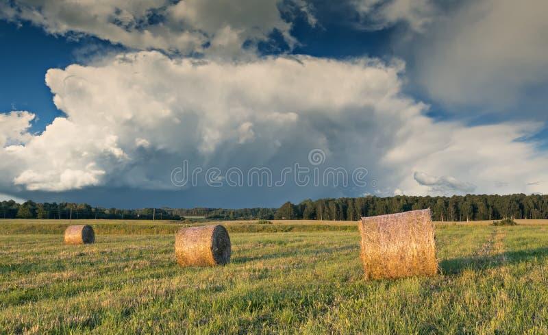 De zomergebied met broodjes van hooibergen in platteland stock afbeeldingen