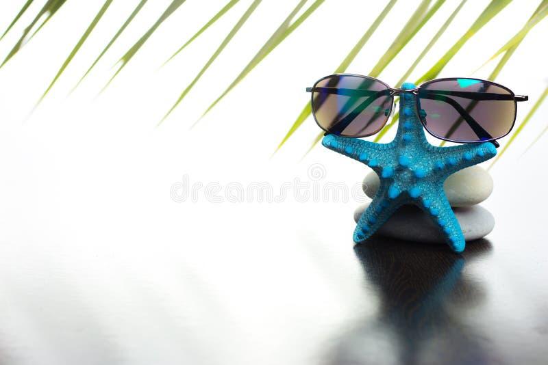de zomergrens stock foto's