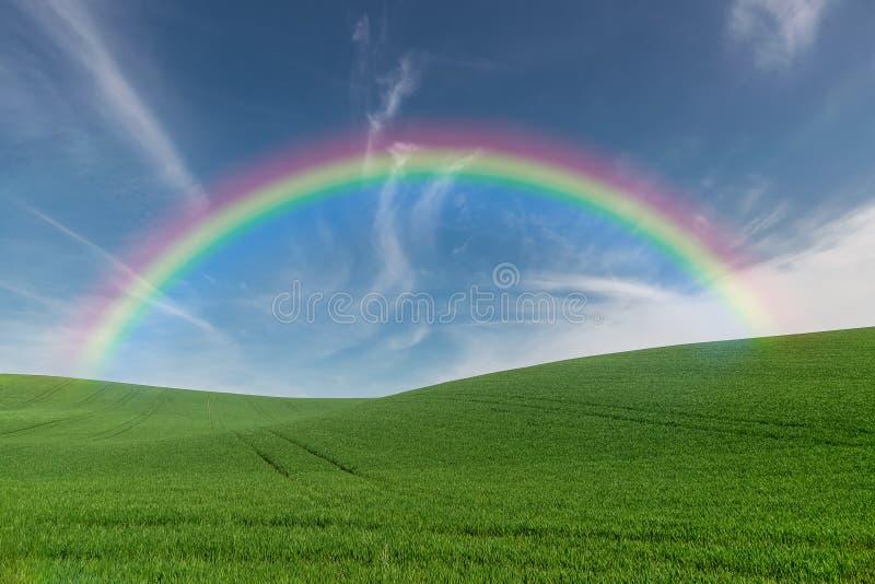 De zomerlandbouwgrond met regenboog stock afbeeldingen