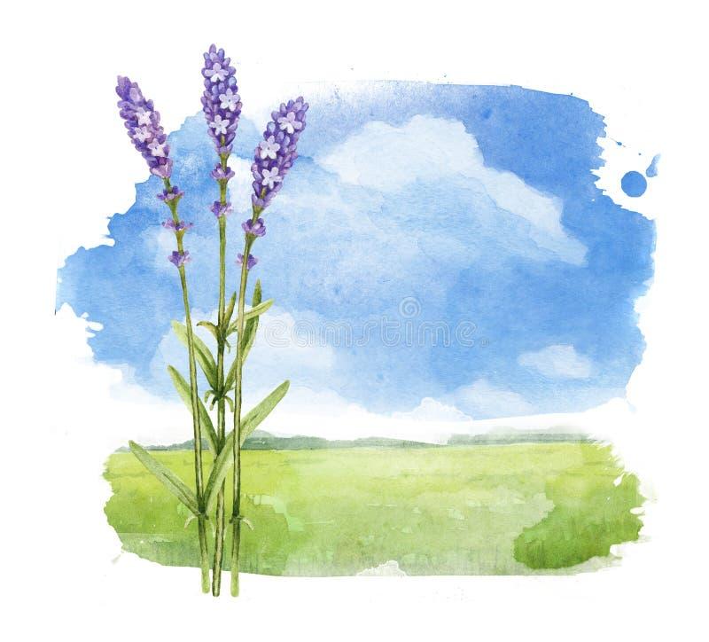 De zomerlandschap royalty-vrije illustratie