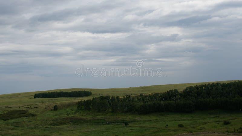 De zomerlandschap in bergen en donkerblauwe hemel De wolken bewegen zich in de Blauwe Hemel over de Bomen royalty-vrije stock fotografie
