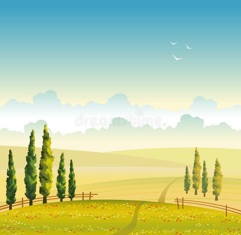 De zomerlandschap - gebied, cipres en wolk Vector illustratie vector illustratie
