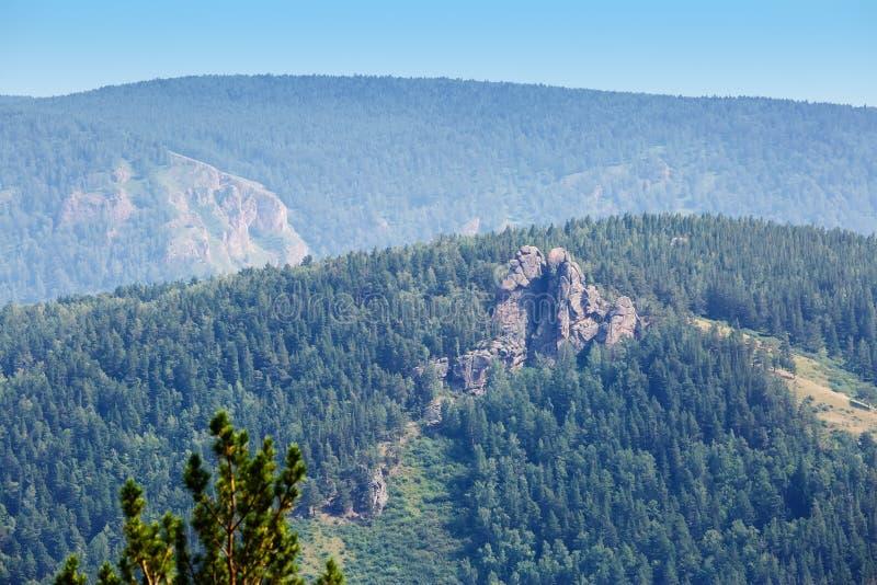 De zomerlandschap het hout, bergen in Rusland royalty-vrije stock foto