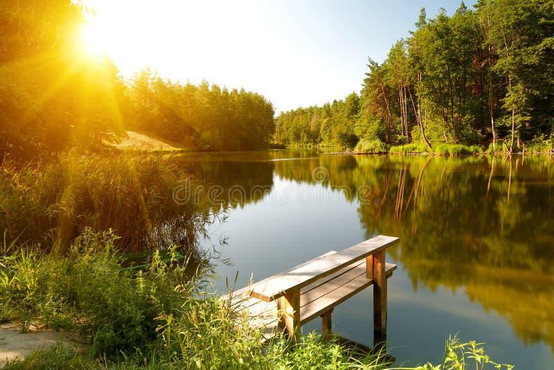 De zomerlandschap met bosmeer royalty-vrije stock afbeelding