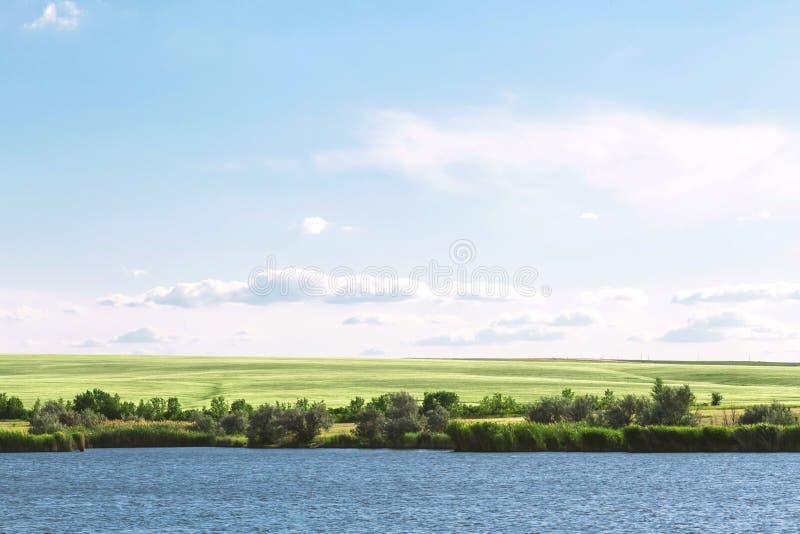 De zomerlandschap met een mooi blauw meer en groene gebieden tegen een blauwe hemel Wandeling, die op de vijver vissen Reis aan d royalty-vrije stock foto