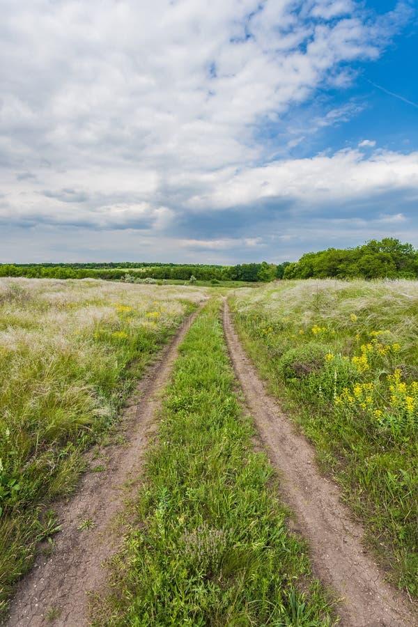 Download De Zomerlandschap Met Groen Gras Stock Afbeelding - Afbeelding bestaande uit bloem, wolk: 29510119