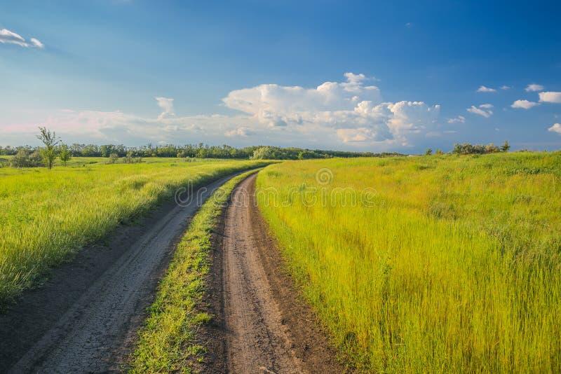 De zomerlandschap met groene gras en weg royalty-vrije stock foto's
