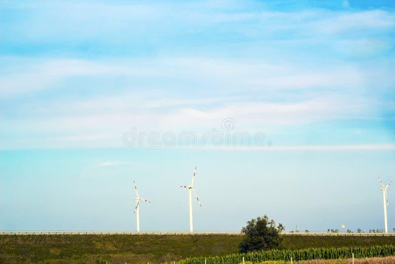 De zomerlandschap met moderne windmolens op gebied stock afbeelding