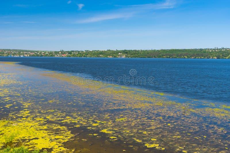 De zomerlandschap met slijmerige Dnipro-rivieroever, de Oekraïne stock foto's