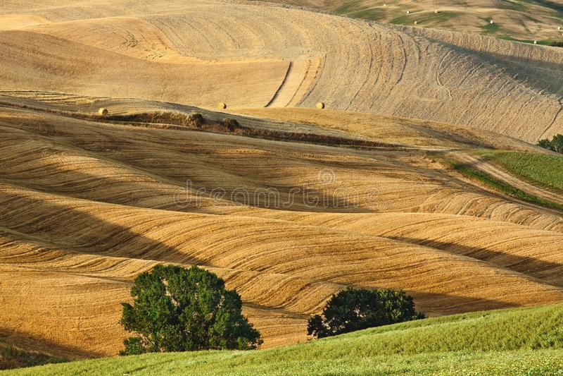 De zomerlandschap van Toscanië stock foto
