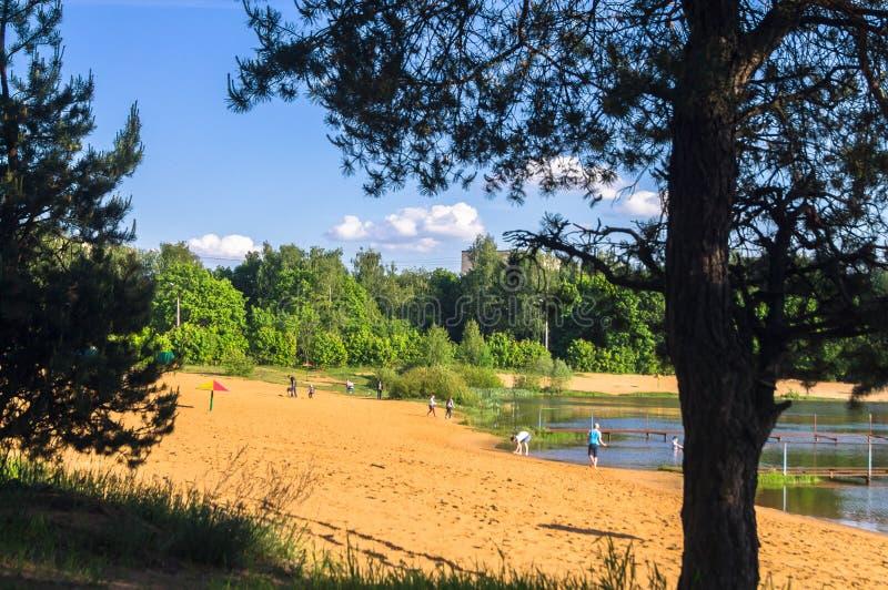 De zomermening van zandige lakeshore in woondistrict in de voorsteden stock foto's