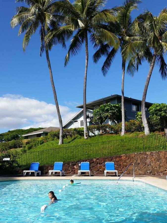 De zomermiddag in een pool royalty-vrije stock fotografie