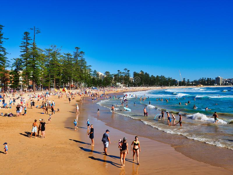 De zomerochtend op Mannelijk Strand, Sydney, Australië royalty-vrije stock foto's