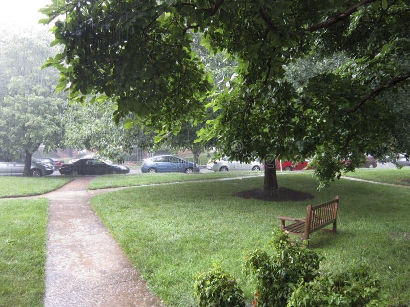 De zomerregen stock afbeelding