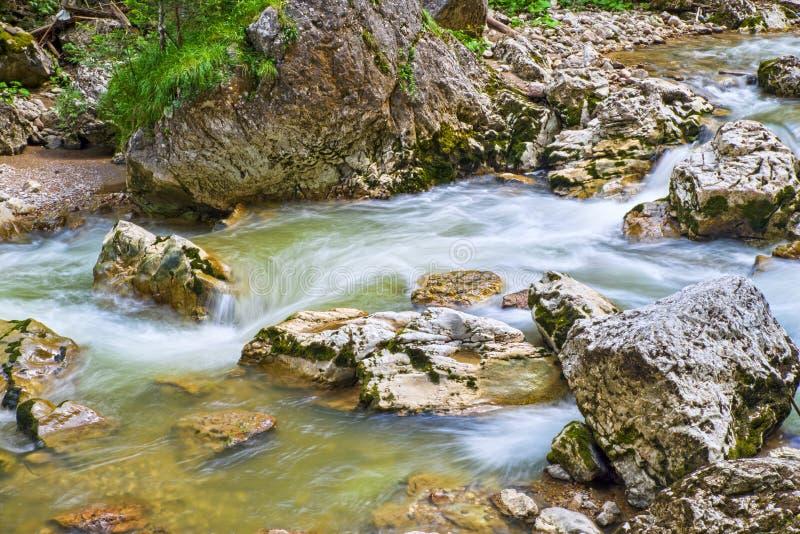 De zomerrivier die in de bergen stromen stock foto's