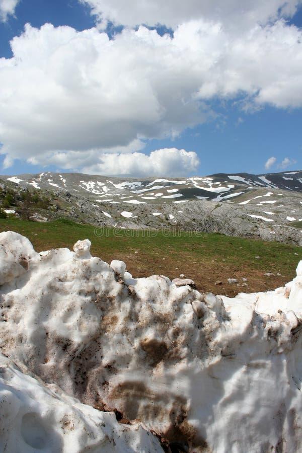 De zomersneeuw in bergen royalty-vrije stock afbeelding
