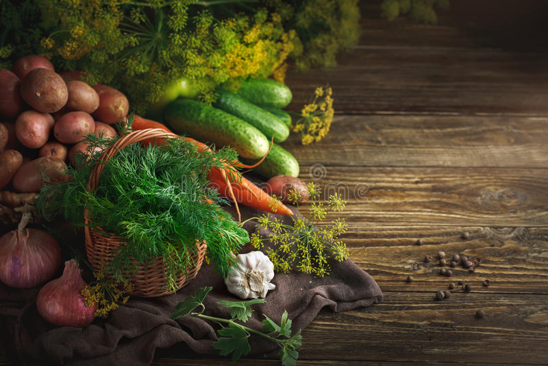 De zomerstilleven van rijpe groenten en dille royalty-vrije stock foto's
