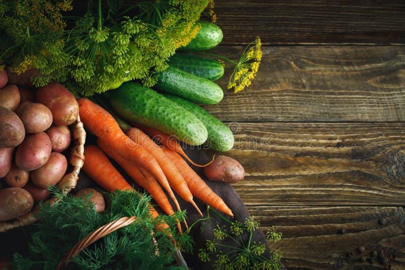 De zomerstilleven van rijpe groenten en dille royalty-vrije stock afbeelding