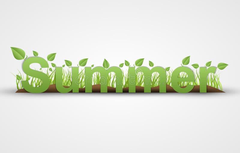 De zomertekst met groene bladeren op een witte achtergrond vector illustratie