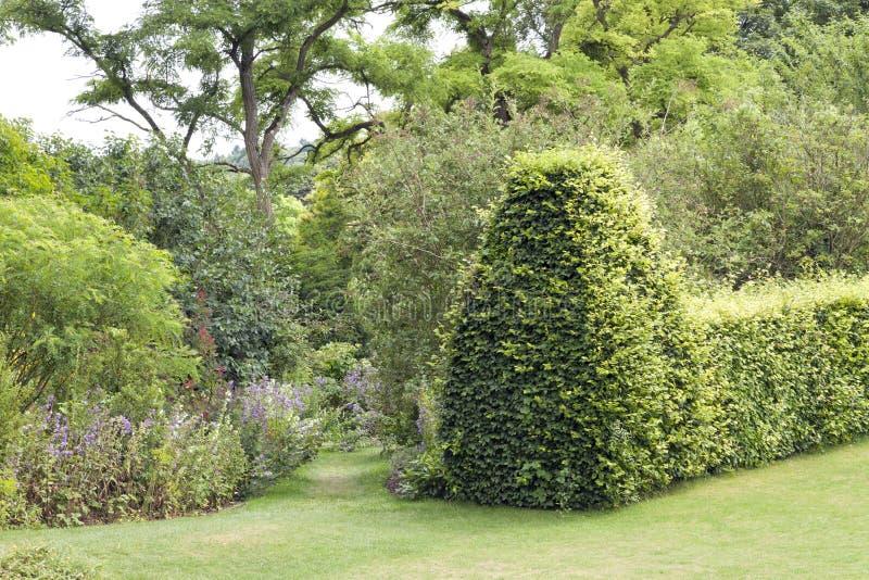 De zomertuin met het lopen van weg tussen bloemen en groene haag stock foto's