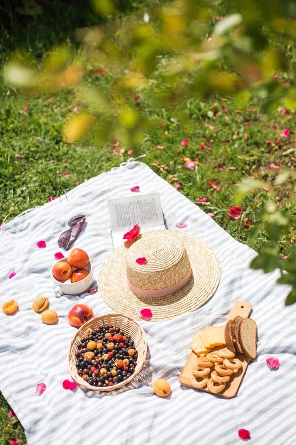 De zomervakantie in tuin met boek en fruit royalty-vrije stock afbeelding