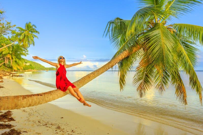 De zomervakanties van Seychellen stock afbeeldingen