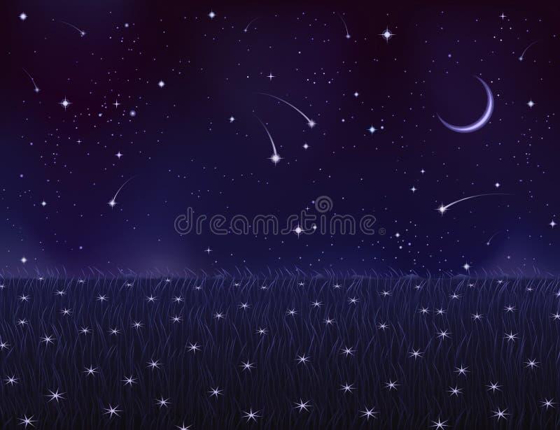 De zomerweide van de nacht die met sterbloemen wordt behandeld vector illustratie