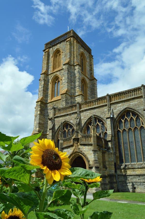 De zomerzonnebloemen buiten een traditionele Engelse kerk stock foto's