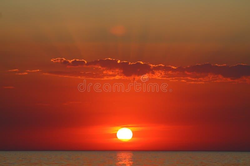 De zomerzonsondergang dichtbij het water royalty-vrije stock afbeeldingen