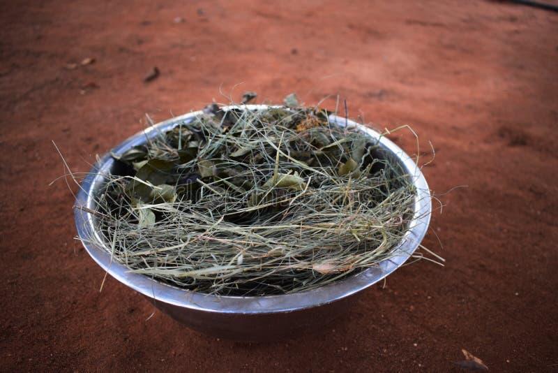 In de zon gedroogde kruiden op grond Ayurvedic DIY stock afbeelding