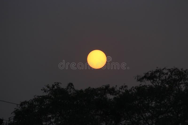 De zon glanst binnen stock afbeeldingen